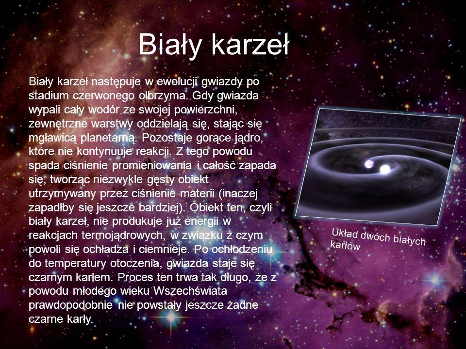 Biały karzeł Biały karzeł następuje w ewolucji gwiazdy po stadium czerwonego olbrzyma. Gdy gwiazda wypali cały wodór ze swojej powierzchni, zewnętrzne