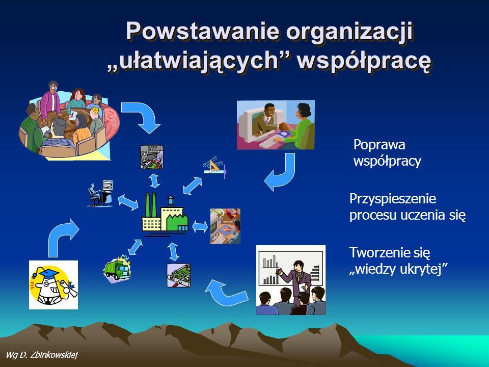 Powstawanie organizacji ułatwiających współpracę Poprawa współpracy Przyspieszenie procesu uczenia się Tworzenie się wiedzy ukrytej Wg D. Zbinkowskiej