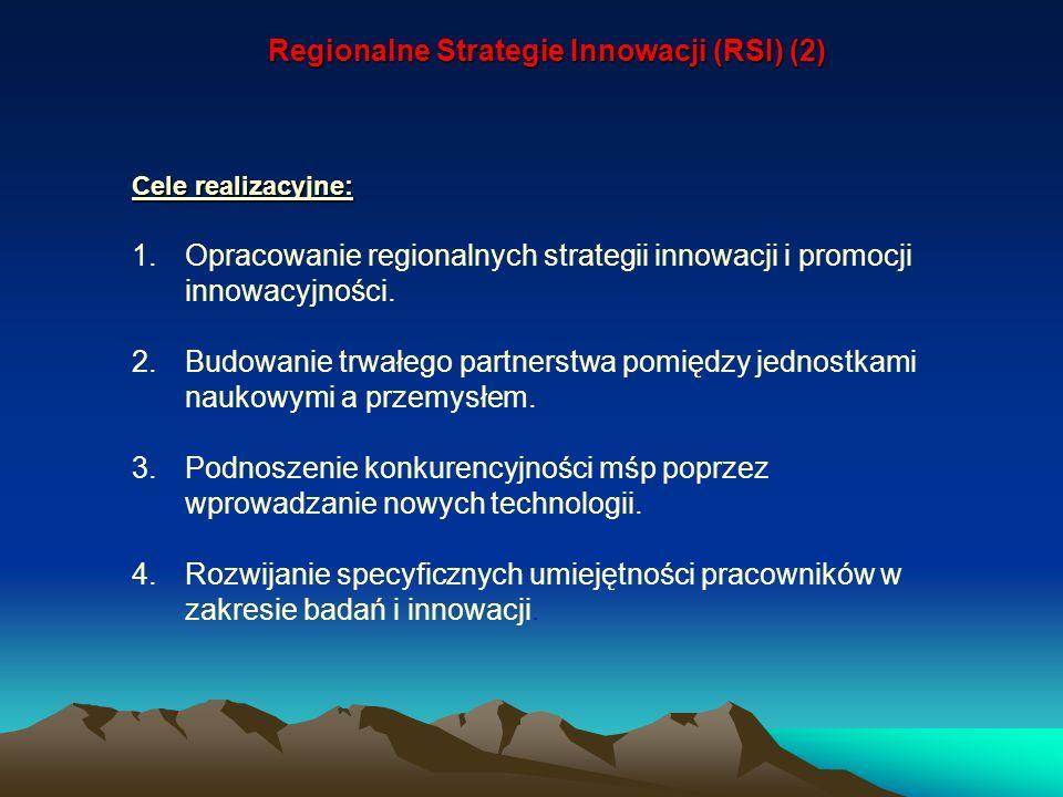 Regionalne Strategie Innowacji (RSI) (2) Cele realizacyjne: 1.Opracowanie regionalnych strategii innowacji i promocji innowacyjności. 2.Budowanie trwa