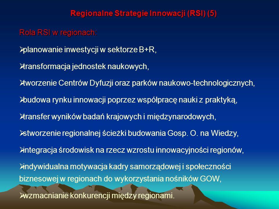 Rola RSI w regionach: planowanie inwestycji w sektorze B+R, transformacja jednostek naukowych, tworzenie Centrów Dyfuzji oraz parków naukowo-technolog