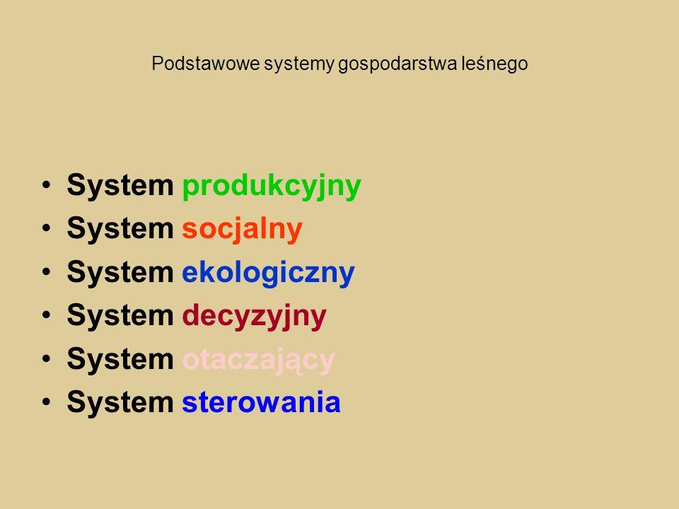 Podstawowe systemy gospodarstwa leśnego System produkcyjny System socjalny System ekologiczny System decyzyjny System otaczający System sterowania