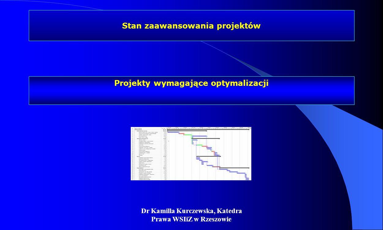 Dr Kamilla Kurczewska, Katedra Prawa WSIiZ w Rzeszowie Stan zaawansowania projektów Projekty wymagające optymalizacji