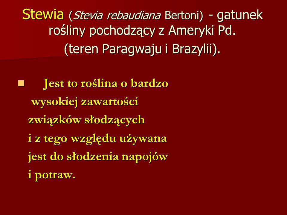 Stewia (Stevia rebaudiana Bertoni) - gatunek rośliny pochodzący z Ameryki Pd. (teren Paragwaju i Brazylii). Jest to roślina o bardzo Jest to roślina o