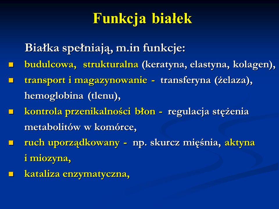 Funkcja białek Białka spełniają, m.in funkcje: Białka spełniają, m.in funkcje: budulcowa, strukturalna (keratyna, elastyna, kolagen), budulcowa, struk