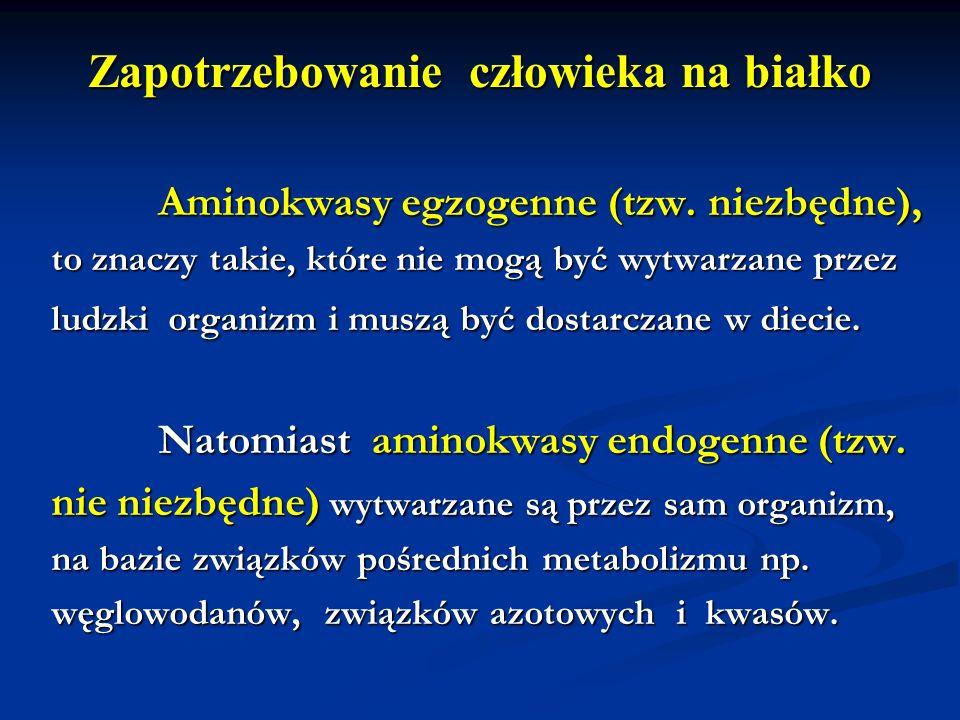Zapotrzebowanie człowieka na białko Aminokwasy egzogenne (tzw. niezbędne), Aminokwasy egzogenne (tzw. niezbędne), to znaczy takie, które nie mogą być