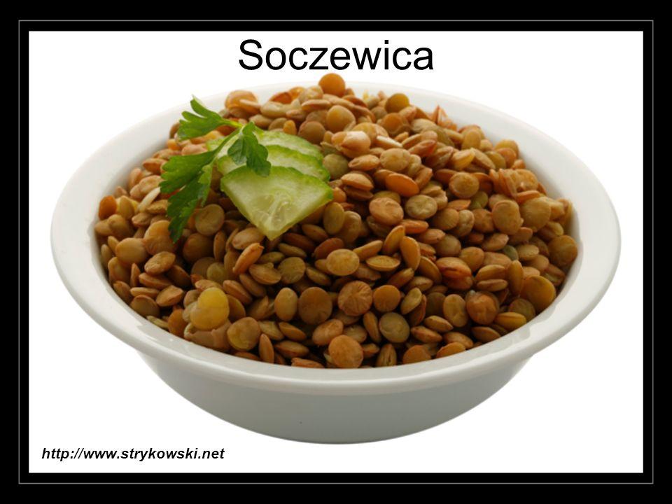 Stewia – słodkie ziółko Stevia jest rośliną zielarską.