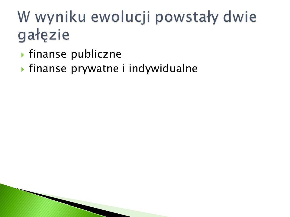 finanse publiczne finanse prywatne i indywidualne