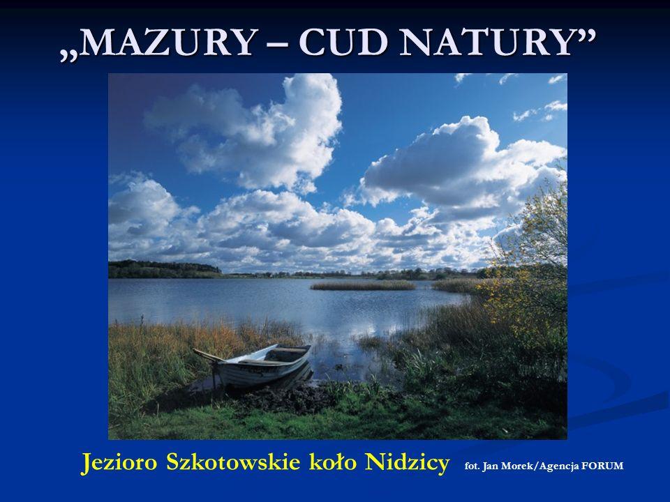 MAZURY – CUD NATURY Jezioro Szkotowskie koło Nidzicy fot. Jan Morek/Agencja FORUM