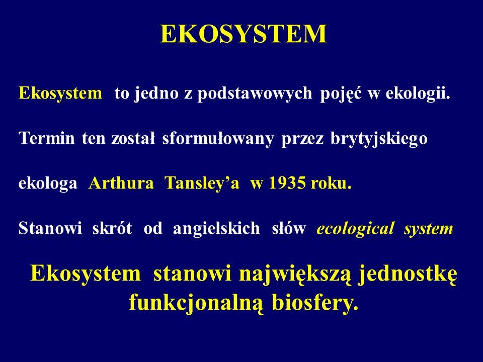 EKOSYSTEM Ekosystem to jedno z podstawowych pojęć w ekologii. Termin ten został sformułowany przez brytyjskiego ekologa Arthura Tansleya w 1935 roku.