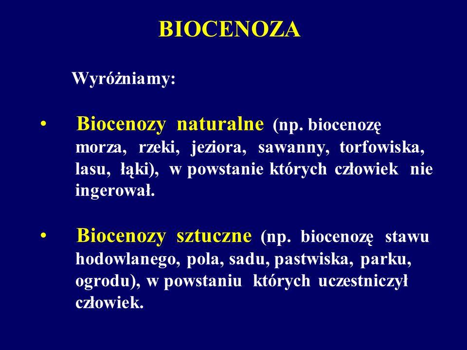 Wyróżniamy: Biocenozy naturalne (np. biocenozę morza, rzeki, jeziora, sawanny, torfowiska, lasu, łąki), w powstanie których człowiek nie ingerował. Bi