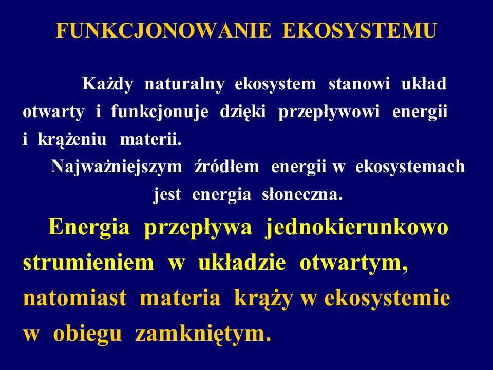 FUNKCJONOWANIE EKOSYSTEMU Każdy naturalny ekosystem stanowi układ otwarty i funkcjonuje dzięki przepływowi energii i krążeniu materii. Najważniejszym