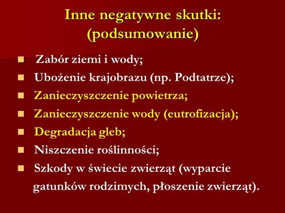 Inne negatywne skutki: (podsumowanie) Zabór ziemi i wody; Ubożenie krajobrazu (np. Podtatrze); Zanieczyszczenie powietrza; Zanieczyszczenie wody (eutr