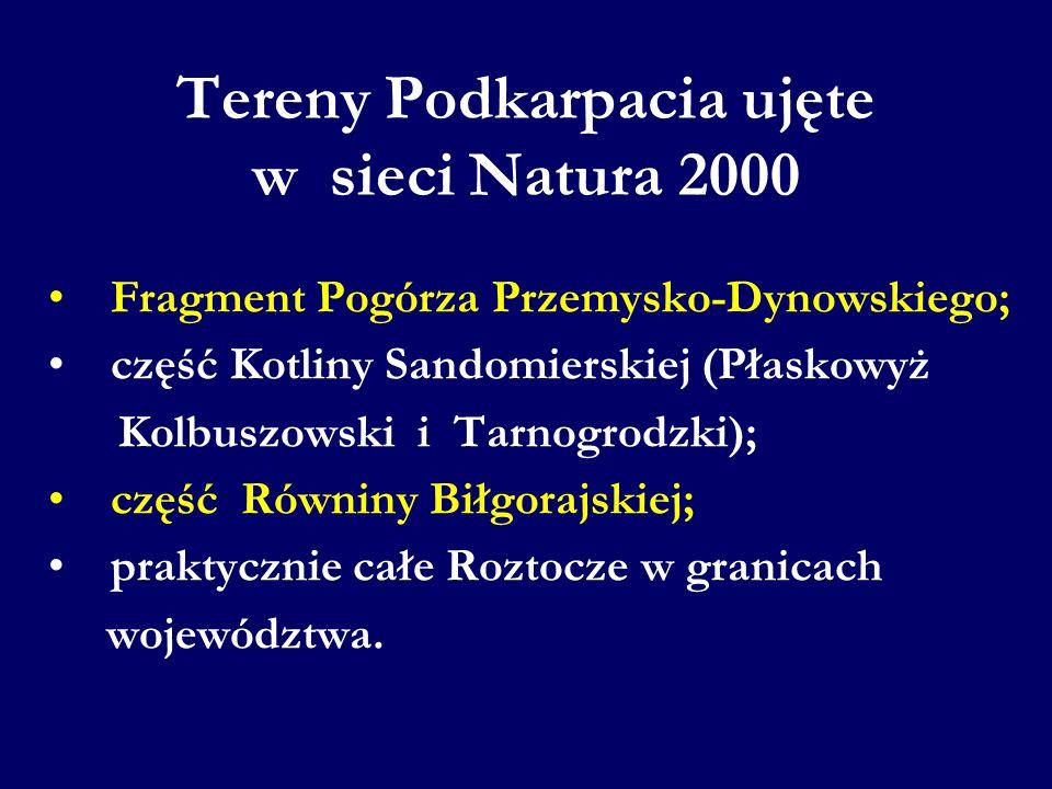 Fragment Pogórza Przemysko-Dynowskiego; część Kotliny Sandomierskiej (Płaskowyż Kolbuszowski i Tarnogrodzki); część Równiny Biłgorajskiej; praktycznie