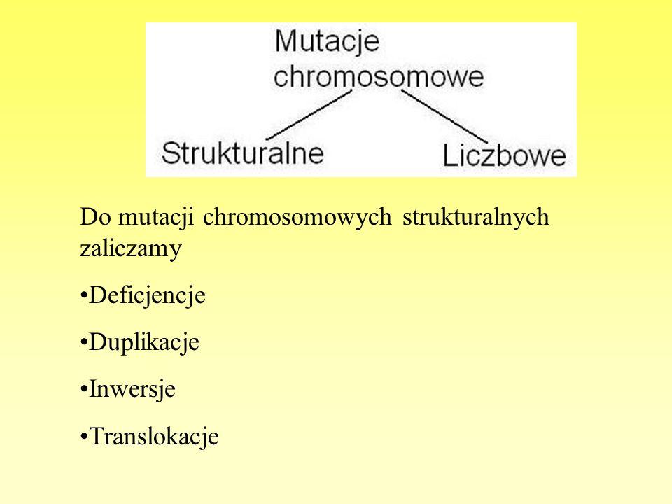 Do mutacji chromosomowych strukturalnych zaliczamy Deficjencje Duplikacje Inwersje Translokacje