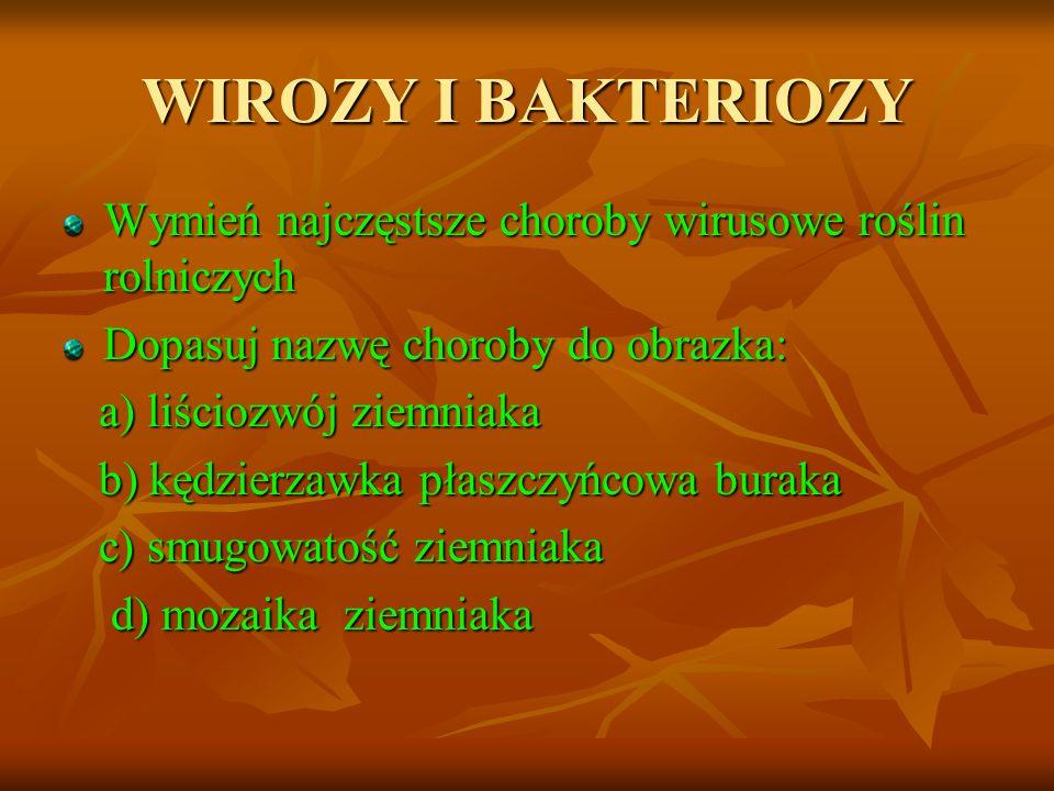 WIROZY I BAKTERIOZY Wymień najczęstsze choroby wirusowe roślin rolniczych Dopasuj nazwę choroby do obrazka: a) liściozwój ziemniaka a) liściozwój ziem