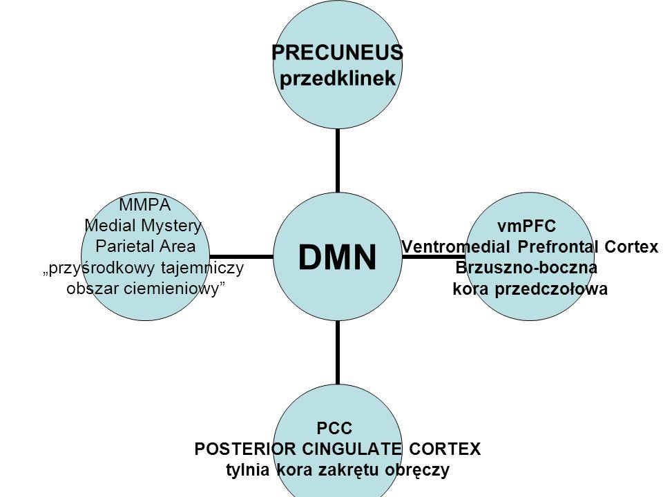 DMN PRECUNEUS przedklinek vmPFC Ventromedial Prefrontal Cortex Brzuszno-boczna kora przedczołowa PCC POSTERIOR CINGULATE CORTEX tylnia kora zakrętu ob