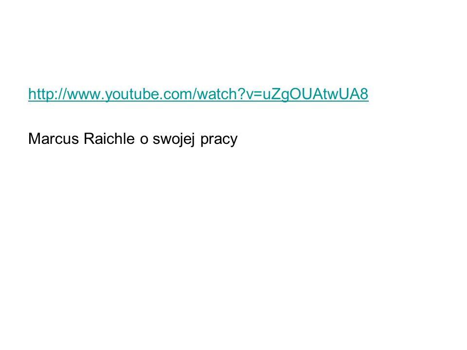 http://www.youtube.com/watch?v=uZgOUAtwUA8 Marcus Raichle o swojej pracy
