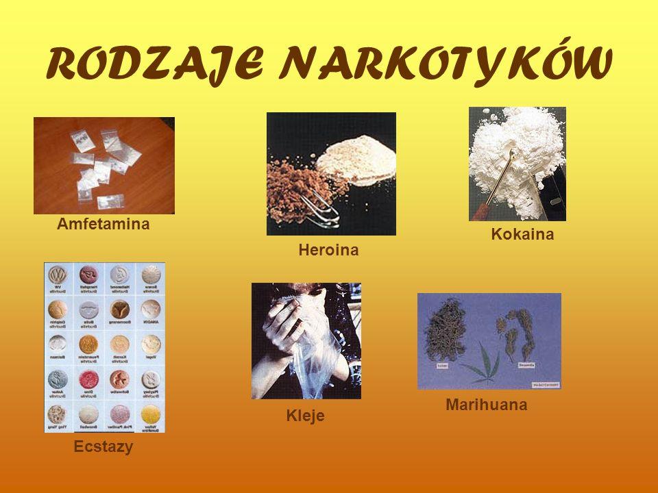 RODZAJE NARKOTYKÓW Amfetamina Ecstazy Kleje Kokaina Marihuana Heroina