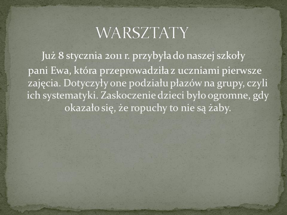 Następne warsztaty odbyły się niespełna miesiąc później, czyli 8 lutego i dotyczyły one zagrożeń, jakie czyhają na płazy, oraz sposobów ochrony tych zwierząt na terenie Polski.