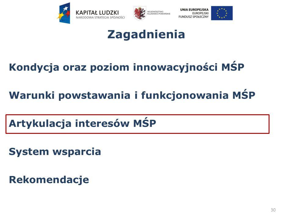 Zagadnienia Kondycja oraz poziom innowacyjności MŚP Warunki powstawania i funkcjonowania MŚP Artykulacja interesów MŚP System wsparcia Rekomendacje 30