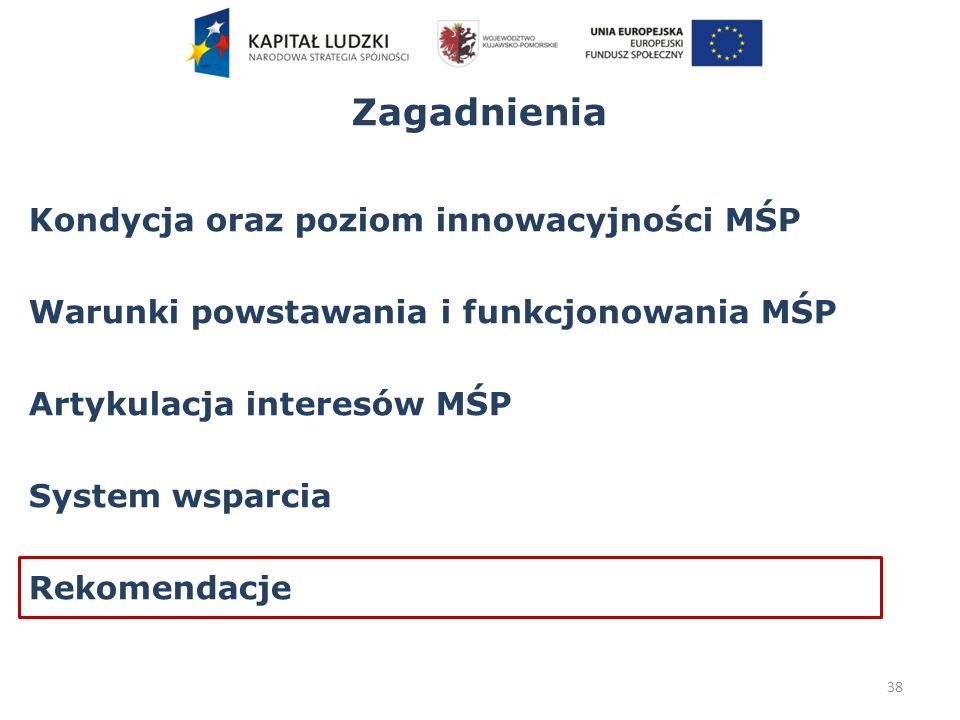 Zagadnienia Kondycja oraz poziom innowacyjności MŚP Warunki powstawania i funkcjonowania MŚP Artykulacja interesów MŚP System wsparcia Rekomendacje 38