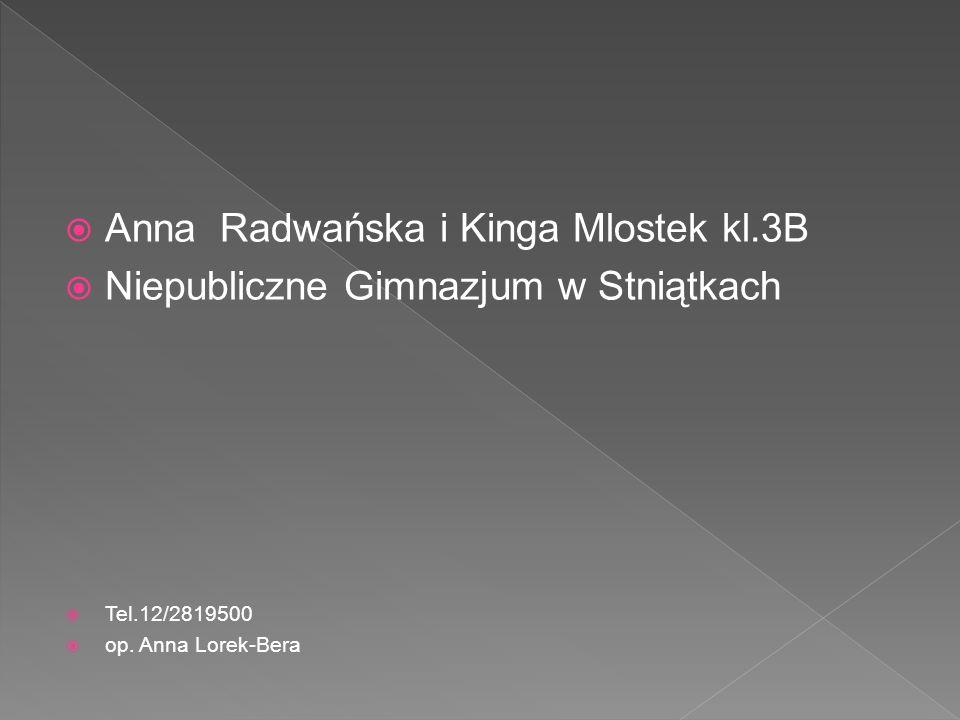 Anna Radwańska i Kinga Mlostek kl.3B Niepubliczne Gimnazjum w Stniątkach Tel.12/2819500 op. Anna Lorek-Bera