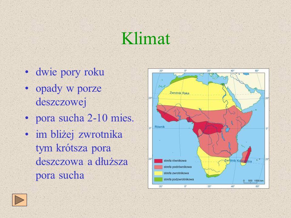 Charakterystyka krajobrazu klimat typowe sawanny świat roślin świat zwierząt