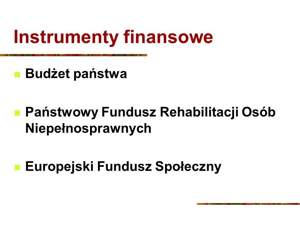 Instrumenty finansowe Budżet państwa Państwowy Fundusz Rehabilitacji Osób Niepełnosprawnych Europejski Fundusz Społeczny