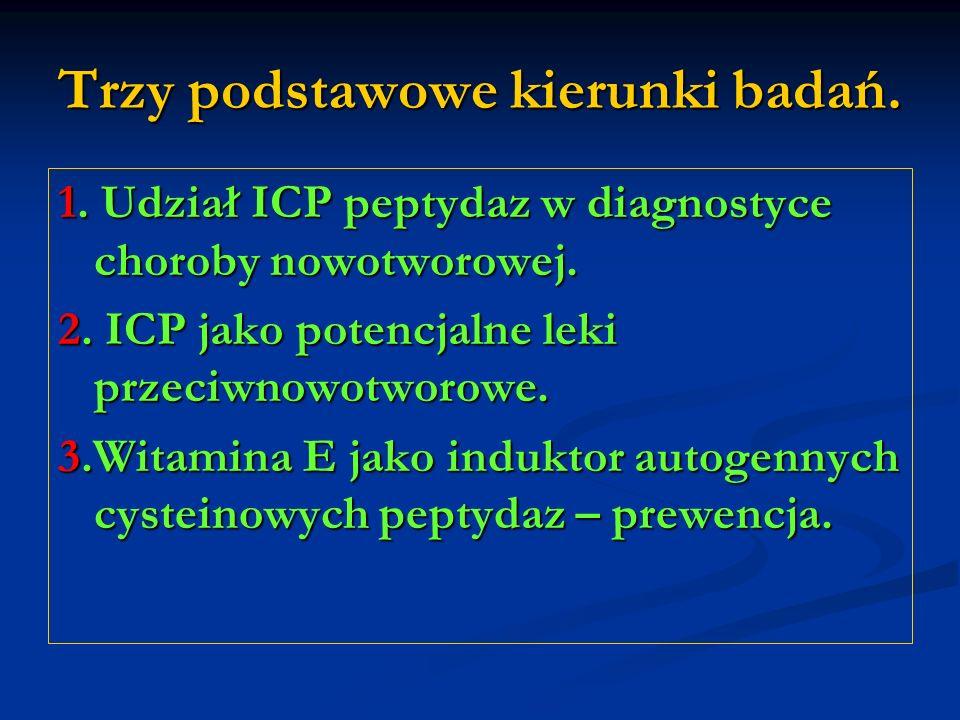 Trzy podstawowe kierunki badań. 1. Udział ICP peptydaz w diagnostyce choroby nowotworowej. 2. ICP jako potencjalne leki przeciwnowotworowe. 3.Witamina