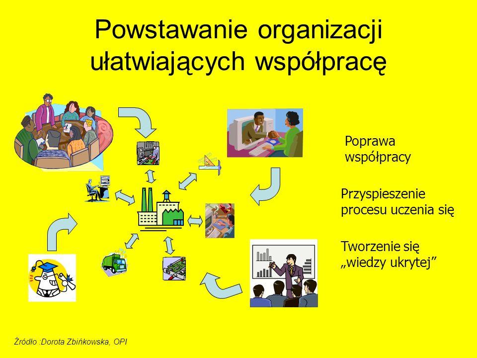 Poprawa współpracy Przyspieszenie procesu uczenia się Tworzenie się wiedzy ukrytej Źródło :Dorota Zbińkowska, OPI Powstawanie organizacji ułatwiającyc