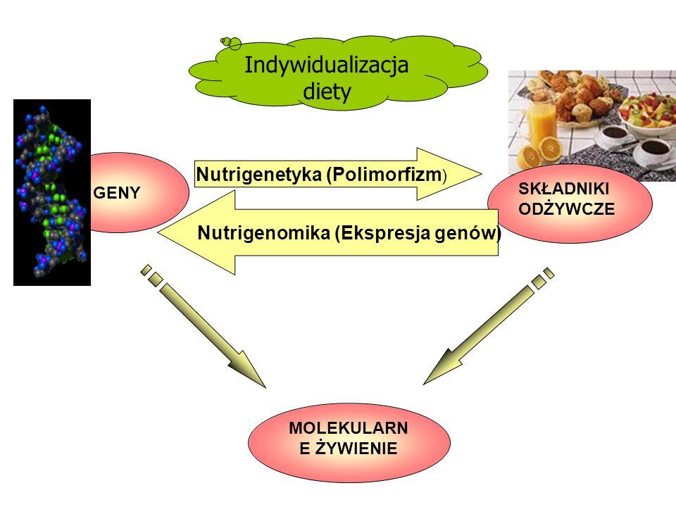 Indywidualizacja diety GENY SKŁADNIKI ODŻYWCZE Nutrigenetyka (Polimorfizm ) Nutrigenomika (Ekspresja genów) MOLEKULARN E ŻYWIENIE