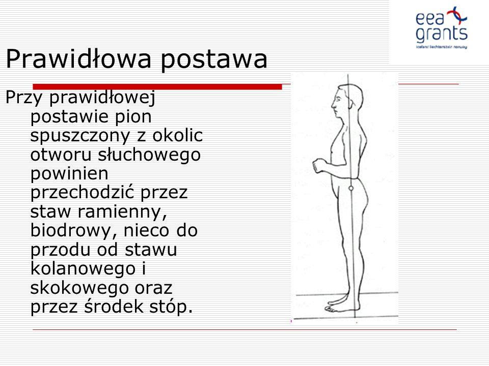 Prawidłowa postawa Przy prawidłowej postawie pion spuszczony z okolic otworu słuchowego powinien przechodzić przez staw ramienny, biodrowy, nieco do p