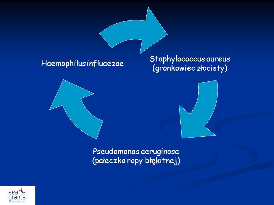 Staphylococcus aureus (gronkowiec złocisty) Pseudomonas aeruginosa (pałeczka ropy błękitnej) Haemophilus influaezae