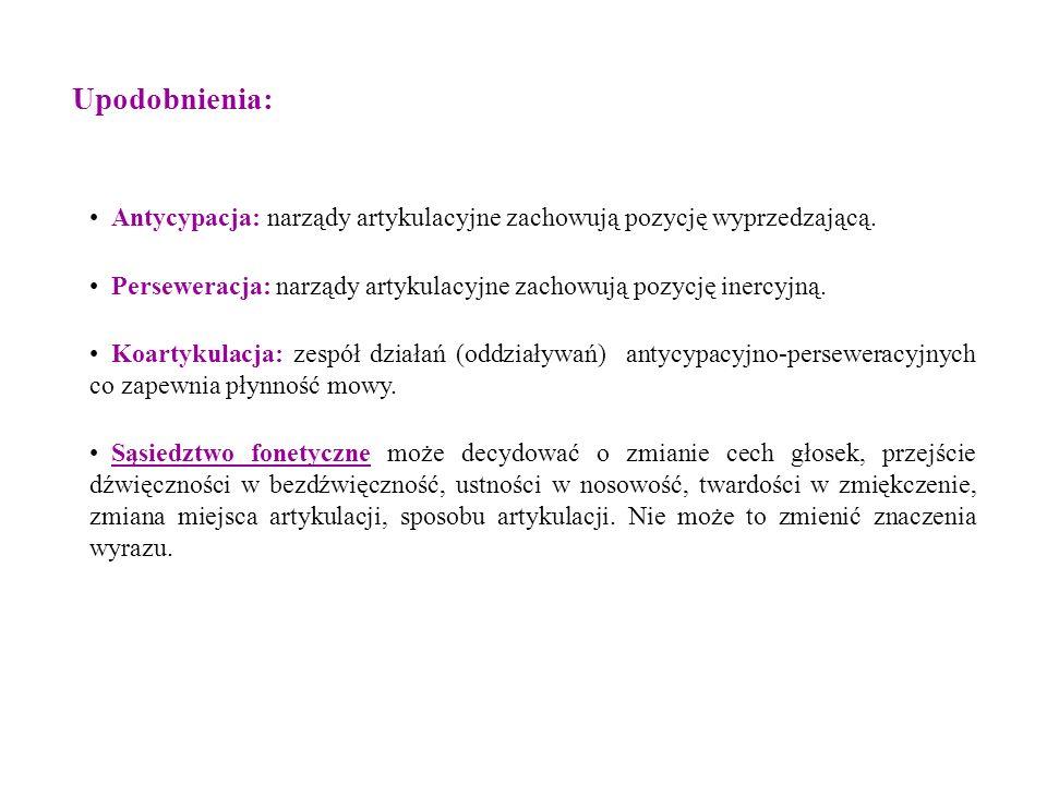 Antycypacja: narządy artykulacyjne zachowują pozycję wyprzedzającą. Perseweracja: narządy artykulacyjne zachowują pozycję inercyjną. Koartykulacja: ze