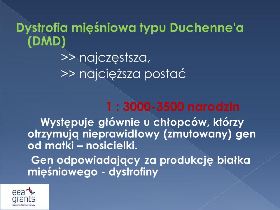 Dystrofia mięśniowa typu Duchenne'a (DMD) >> najczęstsza, >> najcięższa postać 1 : 3000-3500 narodzin Występuje głównie u chłopców, którzy otrzymują n