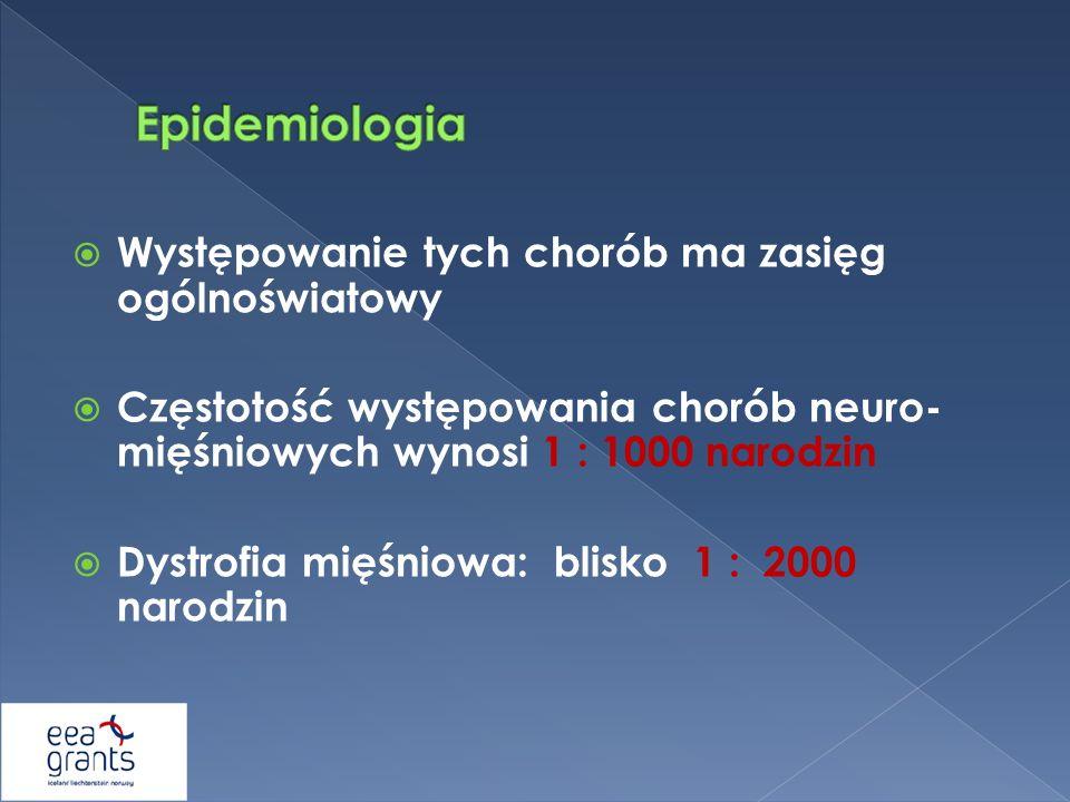 Występowanie tych chorób ma zasięg ogólnoświatowy Częstotość występowania chorób neuro- mięśniowych wynosi 1 : 1000 narodzin Dystrofia mięśniowa: blis