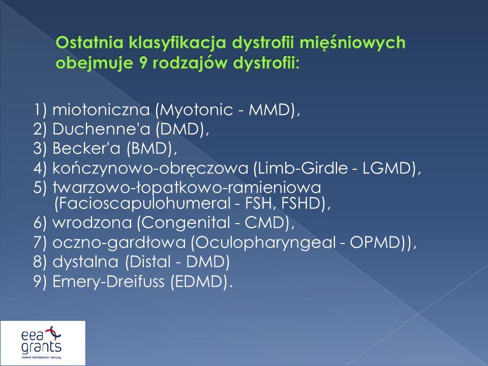 1) miotoniczna (Myotonic - MMD), 2) Duchenne'a (DMD), 3) Becker'a (BMD), 4) kończynowo-obręczowa (Limb-Girdle - LGMD), 5) twarzowo-łopatkowo-ramieniow