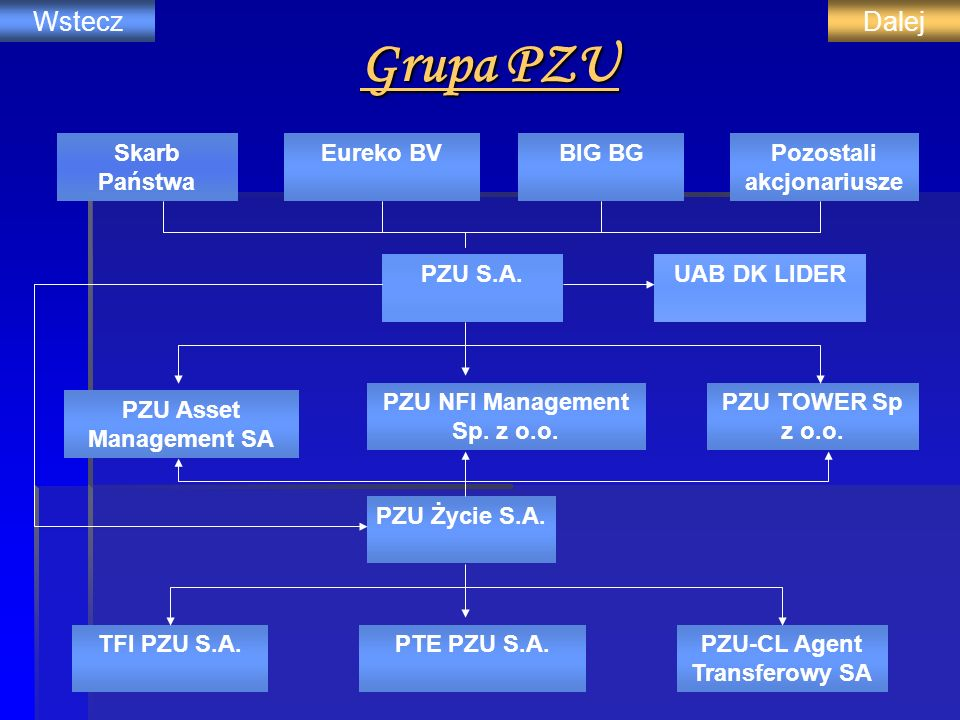Grupa PZU Skarb Państwa Eureko BVBIG BGPozostali akcjonariusze PZU S.A.UAB DK LIDER PZU Asset Management SA PZU NFI Management Sp. z o.o. PZU TOWER Sp