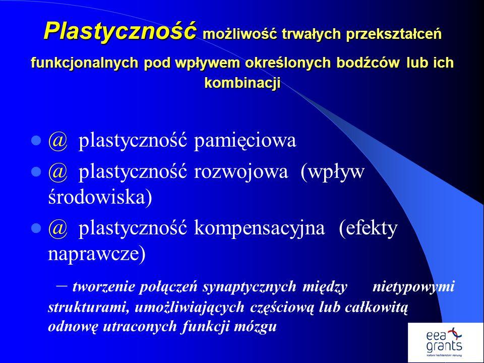 Plastyczność możliwość trwałych przekształceń funkcjonalnych pod wpływem określonych bodźców lub ich kombinacji @ plastyczność pamięciowa @ plastyczno