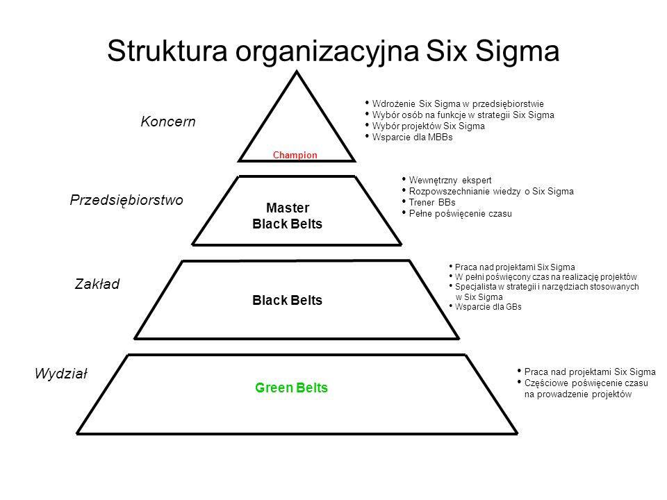 Struktura organizacyjna Six Sigma Praca nad projektami Six Sigma Częściowe poświęcenie czasu na prowadzenie projektów Praca nad projektami Six Sigma W