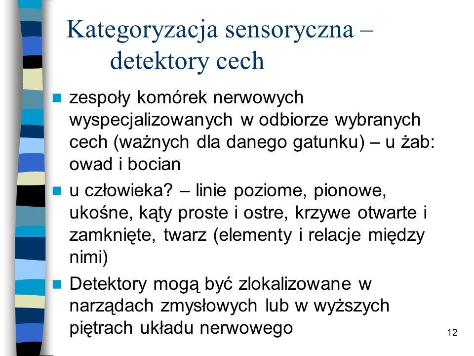12 Kategoryzacja sensoryczna – detektory cech zespoły komórek nerwowych wyspecjalizowanych w odbiorze wybranych cech (ważnych dla danego gatunku) – u