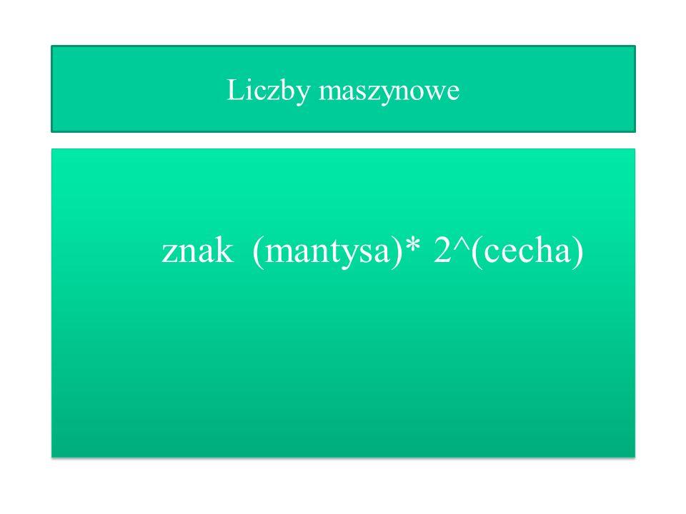 Liczby maszynowe znak (mantysa)* 2^(cecha)