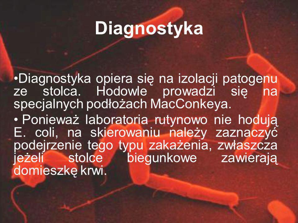 Diagnostyka Diagnostyka opiera się na izolacji patogenu ze stolca. Hodowle prowadzi się na specjalnych podłożach MacConkeya. Ponieważ laboratoria ruty