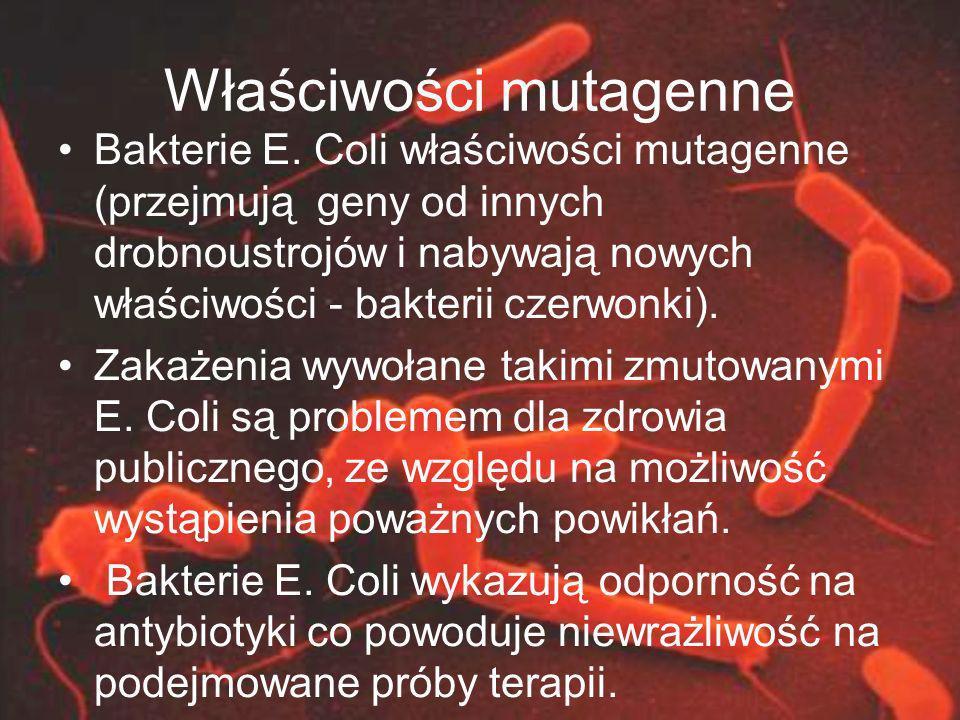 Właściwości mutagenne Bakterie E. Coli właściwości mutagenne (przejmują geny od innych drobnoustrojów i nabywają nowych właściwości - bakterii czerwon