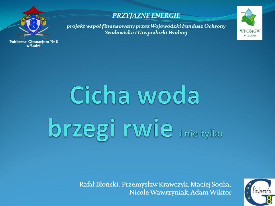PRZYJAZNE ENERGIE projekt współ finansowany przez Wojewódzki Fundusz Ochrony Środowiska i Gospodarki Wodnej Publiczne Gimnazjum Nr 8 w Łodzi Rafał Bło
