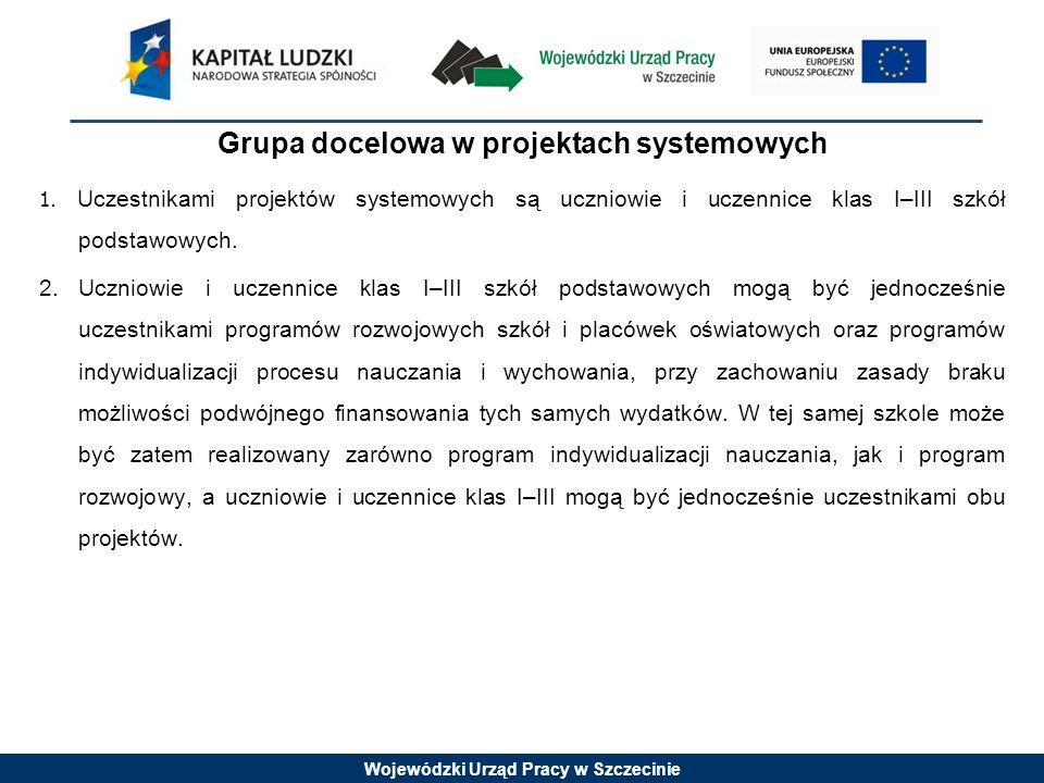 Wojewódzki Urząd Pracy w Szczecinie Grupa docelowa w projektach systemowych cd.