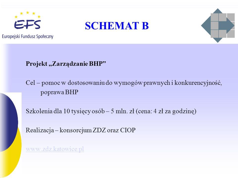 SCHEMAT B Projekt Zarządzanie BHP Cel – pomoc w dostosowaniu do wymogów prawnych i konkurencyjność, poprawa BHP Szkolenia dla 10 tysięcy osób – 5 mln.