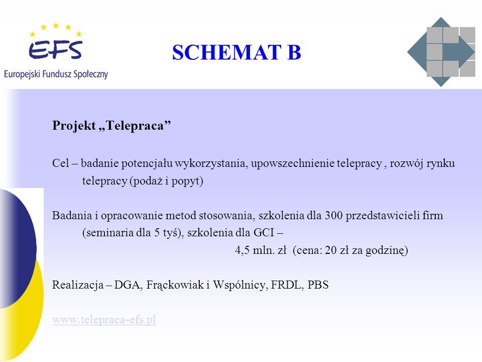SCHEMAT B Projekt Telepraca Cel – badanie potencjału wykorzystania, upowszechnienie telepracy, rozwój rynku telepracy (podaż i popyt) Badania i opracowanie metod stosowania, szkolenia dla 300 przedstawicieli firm (seminaria dla 5 tyś), szkolenia dla GCI – 4,5 mln.