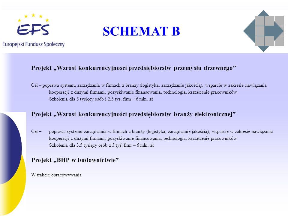 SCHEMAT B Projekt Wzrost konkurencyjności przedsiębiorstw przemysłu drzewnego Cel – poprawa systemu zarządzania w firmach z branży (logistyka, zarządzanie jakością), wsparcie w zakresie nawiązania kooperacji z dużymi firmami, pozyskiwanie finansowania, technologia, kształcenie pracowników Szkolenia dla 5 tysięcy osób i 2,5 tys.