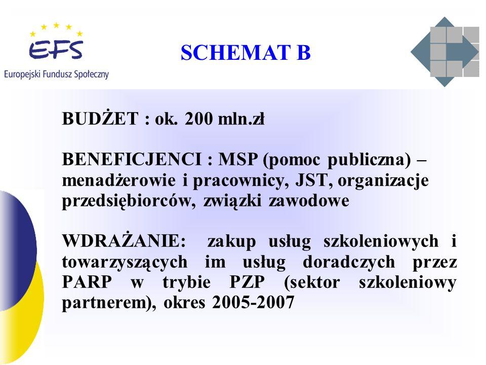 SCHEMAT B BUDŻET : ok. 200 mln.zł BENEFICJENCI : MSP (pomoc publiczna) – menadżerowie i pracownicy, JST, organizacje przedsiębiorców, związki zawodowe